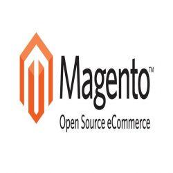 E-commerce sous Magento - Achetez au meilleur prix sur Tout-pour-la-gestion.com