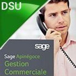 Sage PE ApiNégoce Gestion Commerciale Evolution DSU
