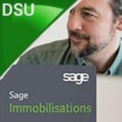 Sage PE Immobilisations DSU